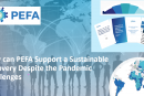 How Can PEFA Support a Sustainable Recovery Despite the Pandemic Challenges